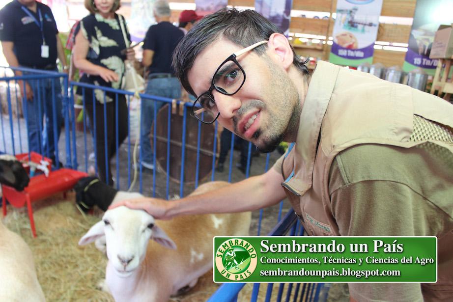 Fran Afonso