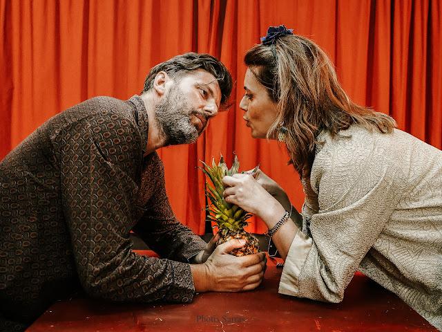 Γιάννενα: Η Ομάδα Τέχνης Α.Ν. παρουσιάζει τη Θεατρική παράσταση 'Δείπνο με ανανά'