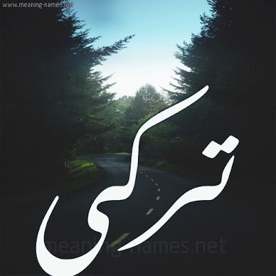 رواية دانه وتركي كاملة pdf