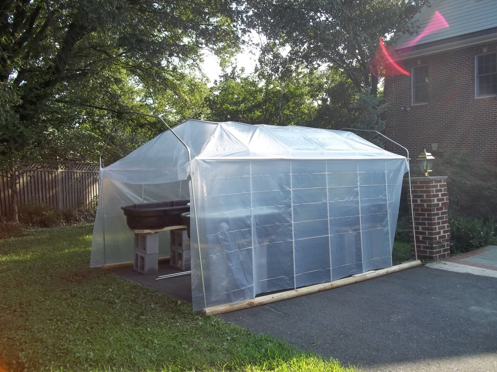 365 Aquaponics: 13 - Creating a Greenhouse out of Electric Metallic
