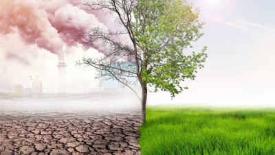 Seandainya Aku Menjadi Pemimpin, Apa Yang Akan Aku Lakukan Untuk Indonesia Terkait Isu Perubahan Iklim?