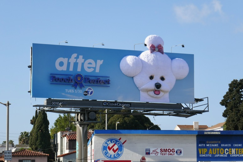 Pooch Perfect After 3D billboard