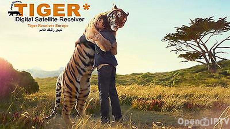 تجديد اشتراك tiger k9+
