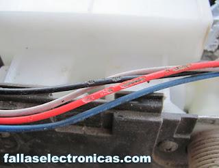 cables comidos por raton