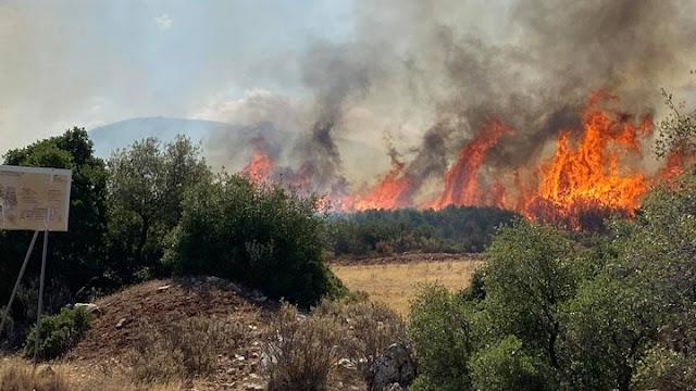 Πυρκαγιά στη Μεσσηνία - Εντολή για προληπτική απομάκρυνση χωριού