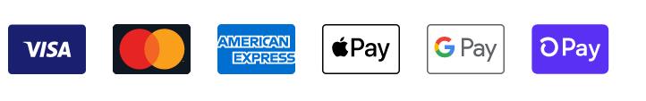 Shopify Payment Processes