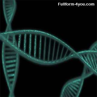 DNA Full Form, What is the full form of DNA?