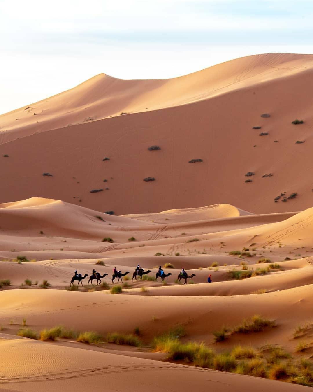 gurun sahara destinasi wisata eksotis maroko