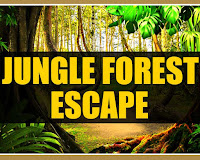 Mirchi Jungle Forest Esca…