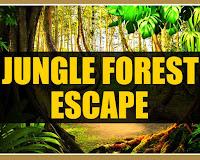 Mirchi Jungle Forest Esca…