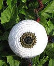 http://www.ravelry.com/patterns/library/eyeball-with-nerve-endings