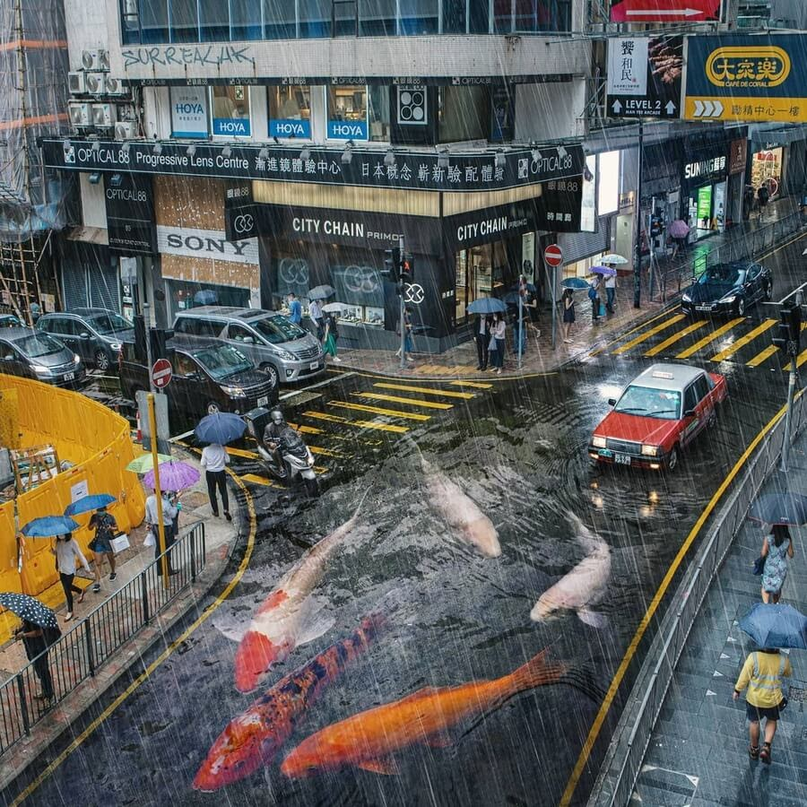 02-Heavy-rain-and-fish-Tommy-Fung-www-designstack-co