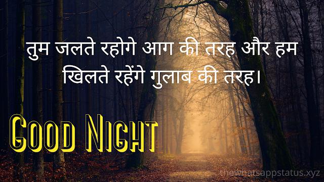 2020 Good Night Shayari Images (8)