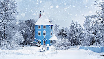 beauty of Finland during winter