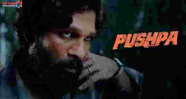 pushpa-full-movie-download-in-hindi-filmyzilla