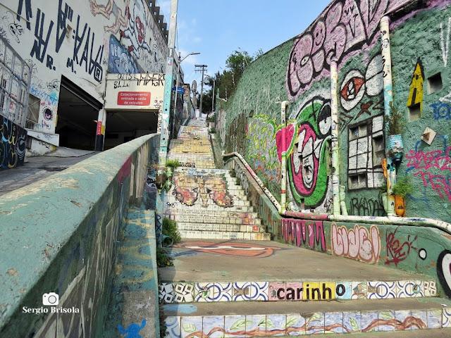Vista ampla da Escadaria do Patápio - Jardim das Bandeiras - São Paulo