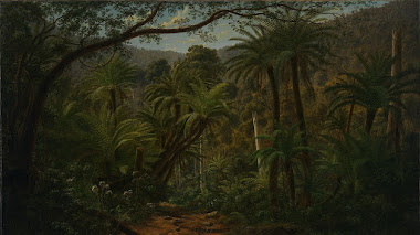 Helechos arborescentes en el Bosque de Sherbrookeen en Melbourne