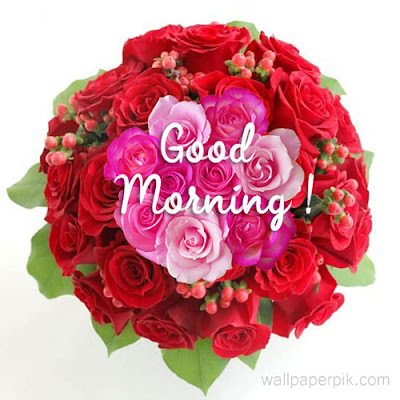 beautiful good morning images new