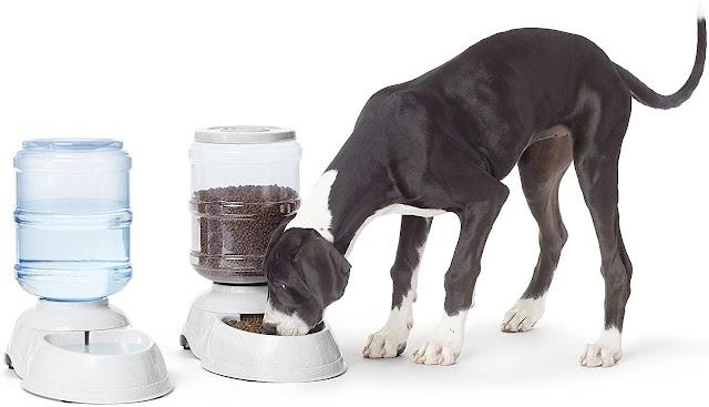 AmazonBasics Alimentador y regadera para mascotas autodispensable