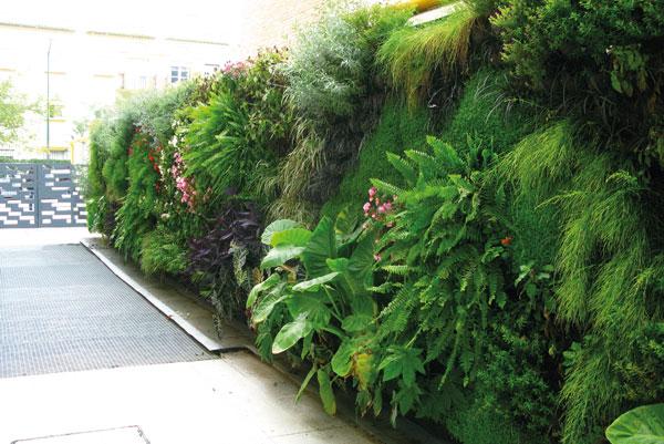 Ren e carretero mazzarri agente inmobiliaria jardines for Edificios con jardines verticales