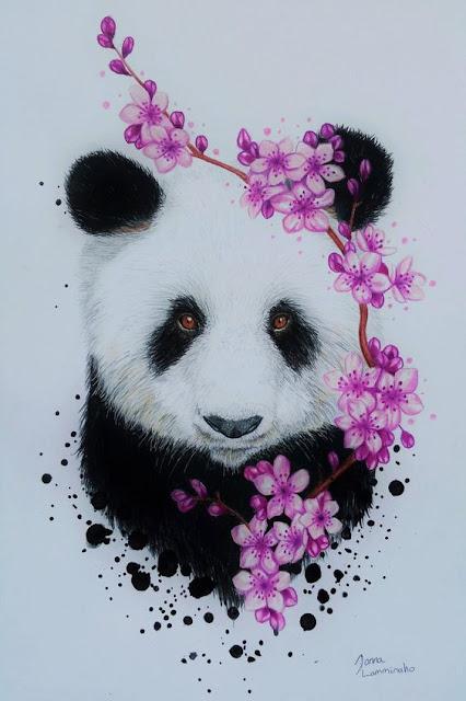 باندا, خلفيات للهاتف, خلفيات للهاتف دب باندا, دب باندا, صور خلفيات, Großer Panda, Panda, Tier  رمزيات الباندا