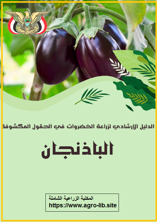 كتاب : الدليل الارشادي لزراعة الباذنجان في الحقول المكشوفة