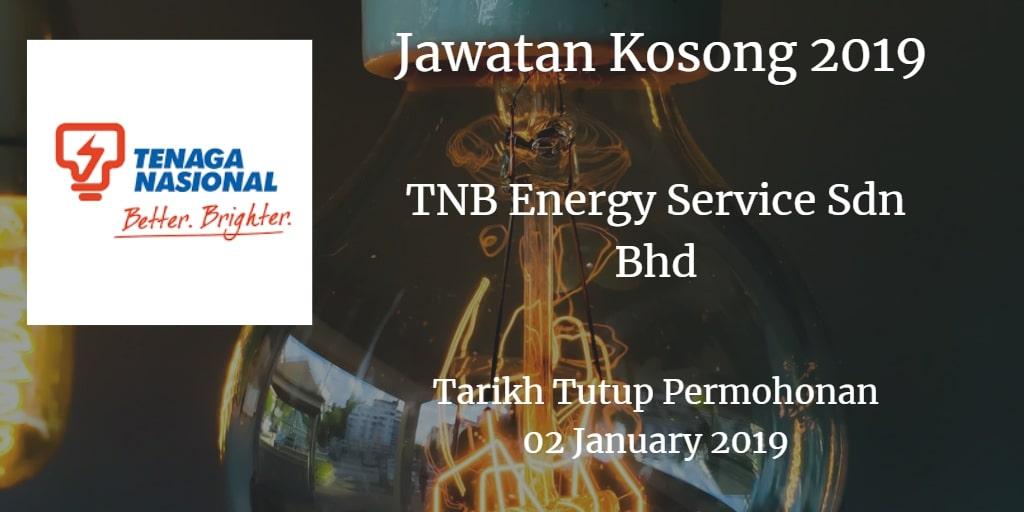 Jawatan Kosong TNB Energy Service Sdn Bhd 11 & 13 January 2019