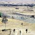 সন্ত্রাসী হামলায় পাকিস্তানে ১০ সেনা নিহত
