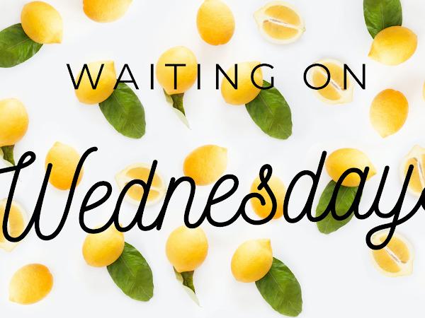 Waiting on Wednesday (19): Accidentally Engaged by Farah Heron