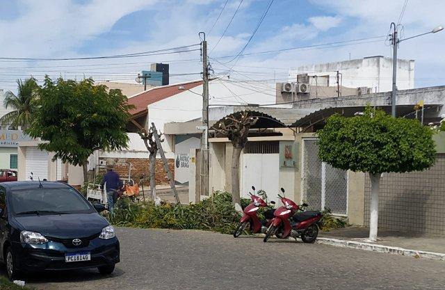 Populares reclamam de podas irregulares de árvores em Santa Cruz do Capibaribe