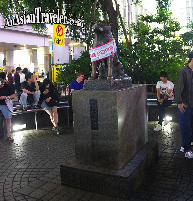 Hachiko Statue at Shibuya Crossing