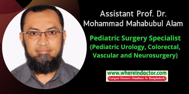 Profile of Assistant Prof. Dr. Mohammad Mahabubul Alam