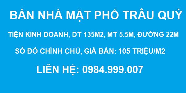 Bán nhà mặt phố Trâu Quỳ, Gia Lâm, DT 135m2, MT 5.5m, tiện kinh doanh, SĐCC, 2020