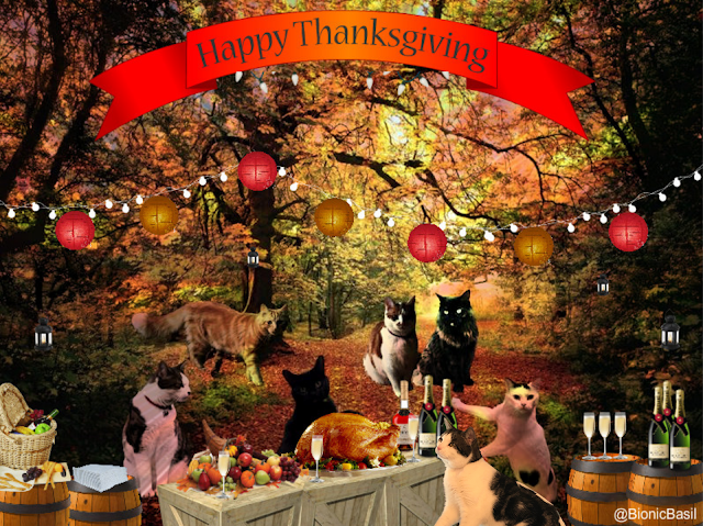 Happy Thanksgiving with Basil & The B Team at BBHQ ©BionicBasil® 2019