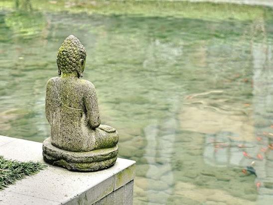 Ce que la méditation m'a appris