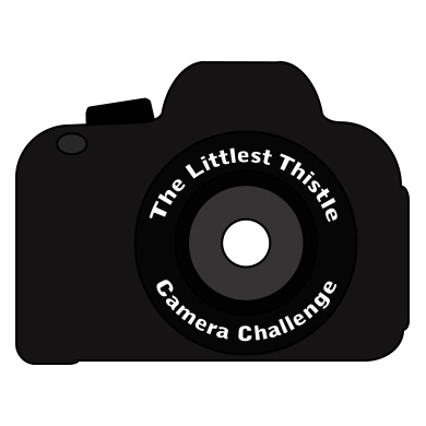 Littlest Thistle Camera Challenge 2015