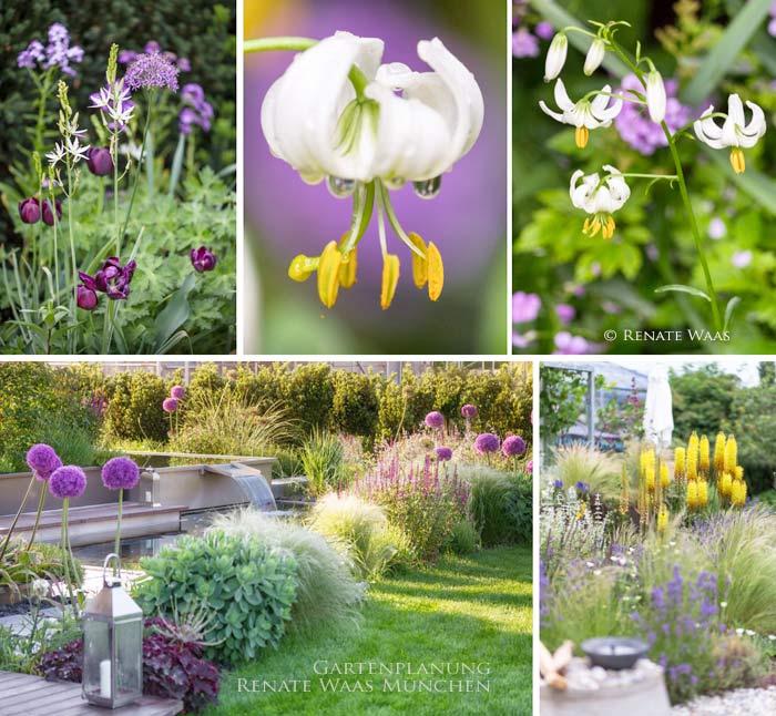 Gartenblog geniesser garten blumenzwiebeln pflanzen - Gartenplanung munchen ...