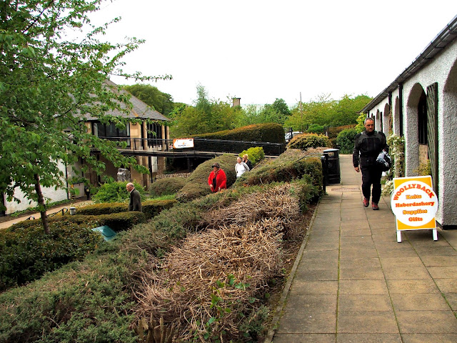 Stanhope County Durham beauty spot