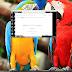 Xiaomi Redmi S2 (YSL) Mi Account | Redmi S2 (YSL) FRP