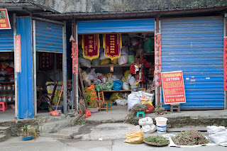 A Chinese apothecary supply store in a hidden area of Guilin, China. Unknown items for sale displayed here.