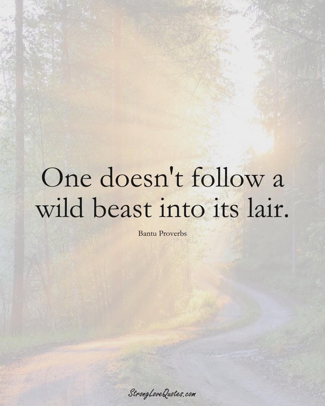 One doesn't follow a wild beast into its lair. (Bantu Sayings);  #aVarietyofCulturesSayings