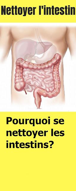 Pourquoi se nettoyer les intestins?