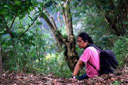 Surga Alam Tersembunyi: Air Terjun Ciheulang Cianjur Jawa Barat