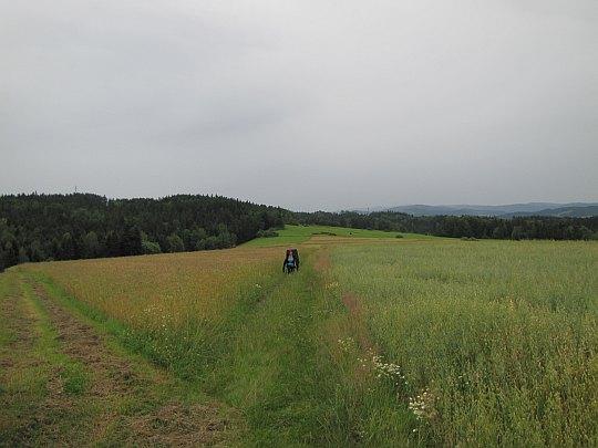 Na łąkach wsi Skawa. Z lewej widać Birtalową (626 m n.p.m.) z masztem telekomunikacyjnym.