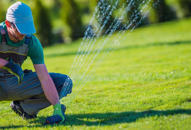 Should You Consider Hydroseeding for Your Lawn?