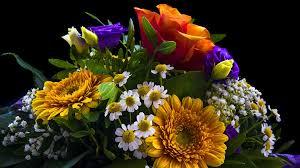 San Valentino, Coldiretti: fiori per salvare 200mila posti di lavoro