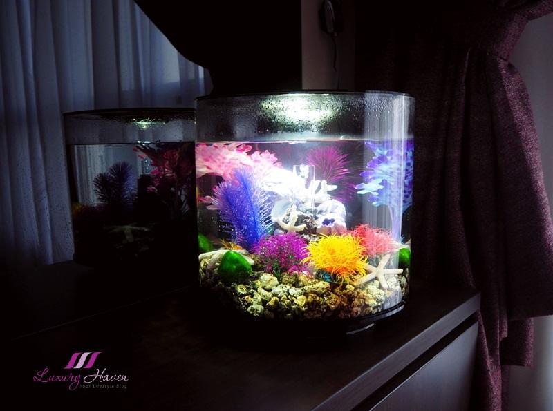 biorb home aquarium underwater world water feature
