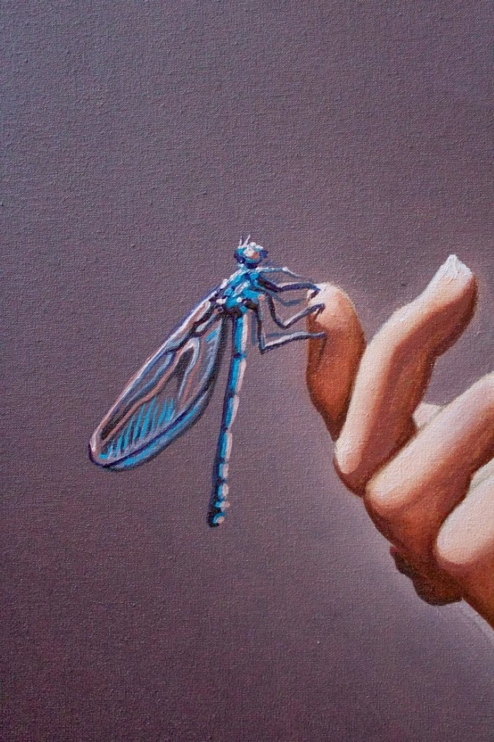 The Dragonfly and the rose. Eduardo Urbano Merino 5
