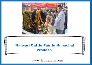 Nalwari Cattle Fair In Himachal Pradesh