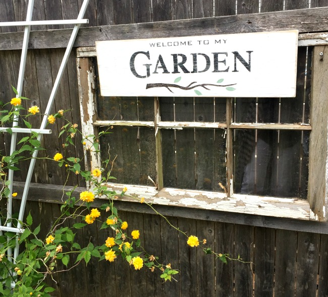 old window with garden sign